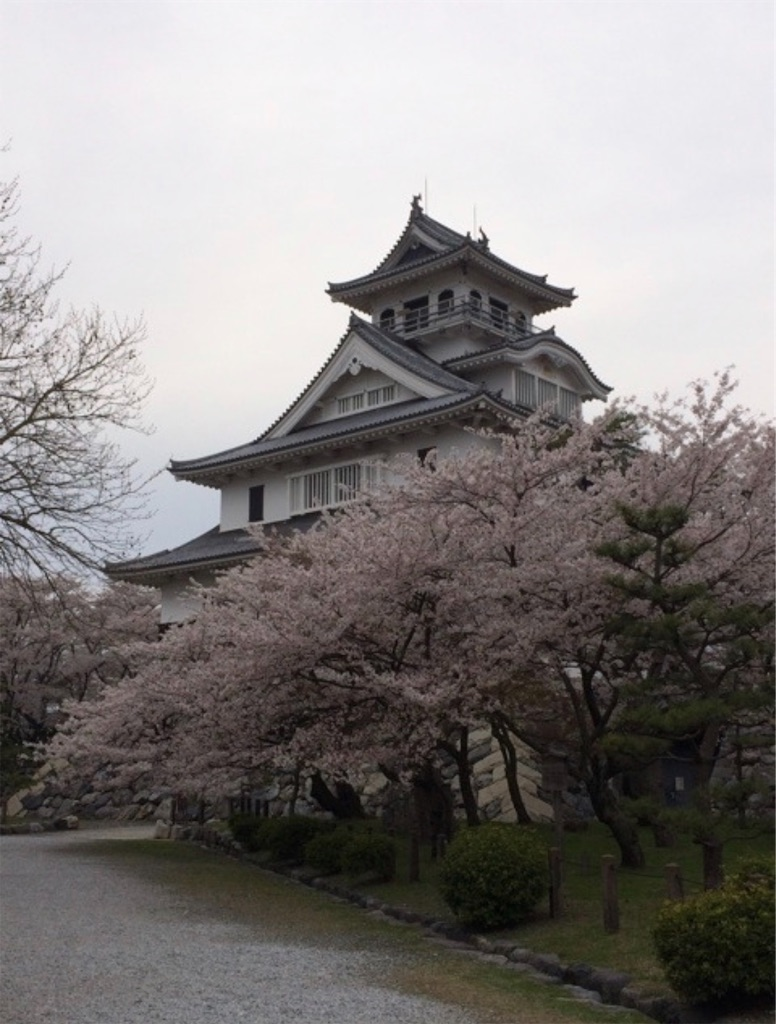 f:id:sakiko2002:20191027235457j:image