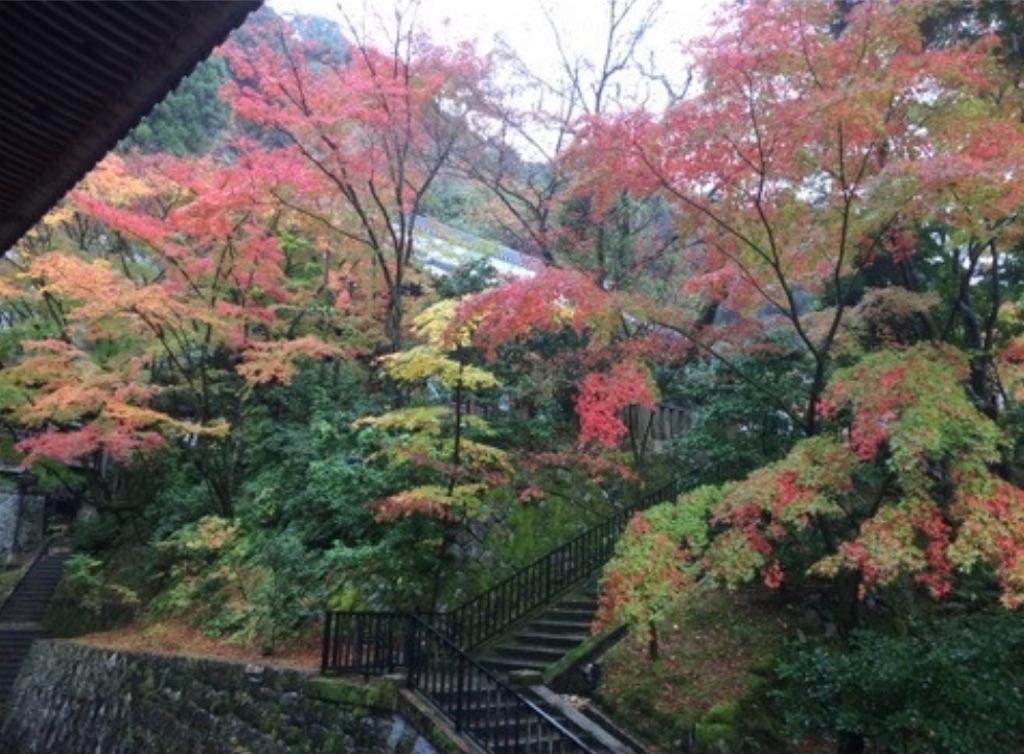 f:id:sakiko2002:20200412001045j:image