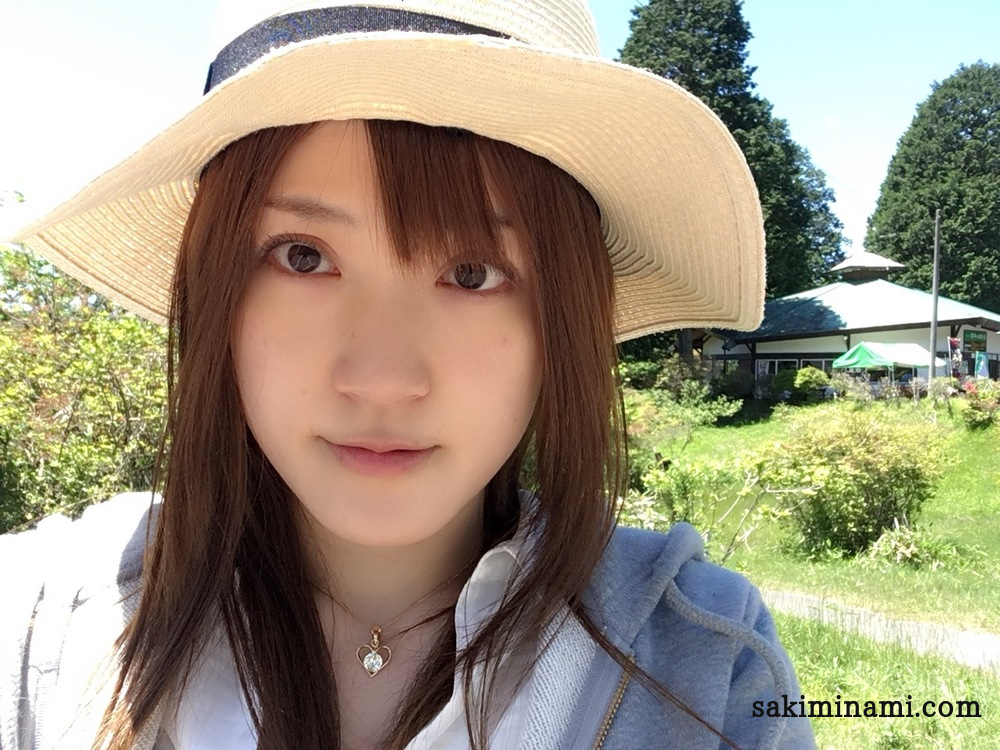 f:id:sakiminami-7:20180521183652p:plain