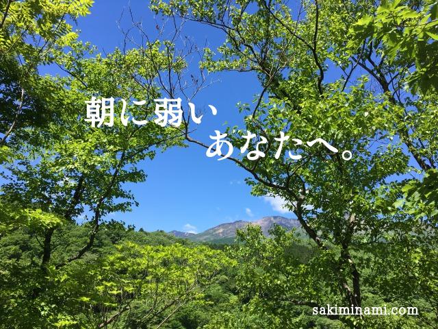 f:id:sakiminami-7:20180531171636p:plain