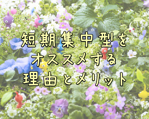 f:id:sakitouchi:20170308232806j:plain