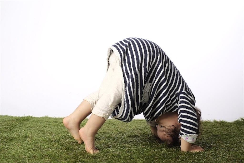 f:id:sakitus_yoga:20170219155104j:image