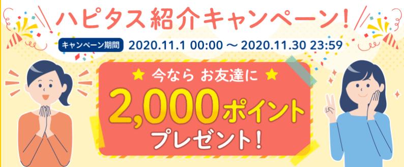 f:id:sakky_mile:20201102224553p:plain