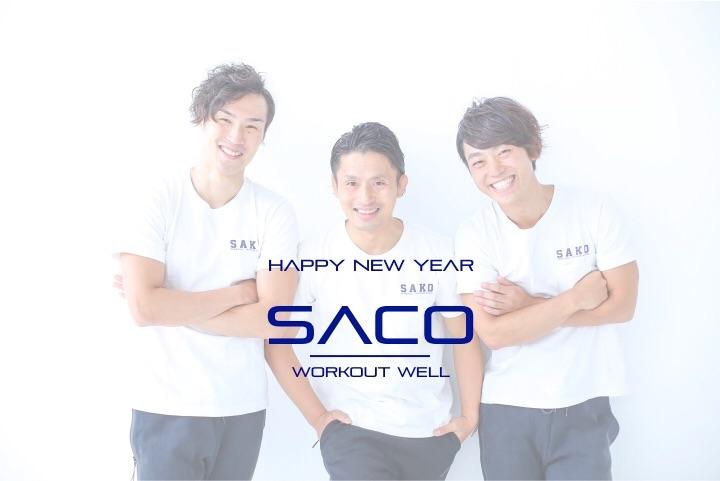f:id:sako-japan:20170103140354j:image