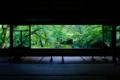 京都新聞写真コンテスト 特別な時間
