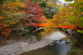 京都新聞写真コンテスト 京の秋のはじまり