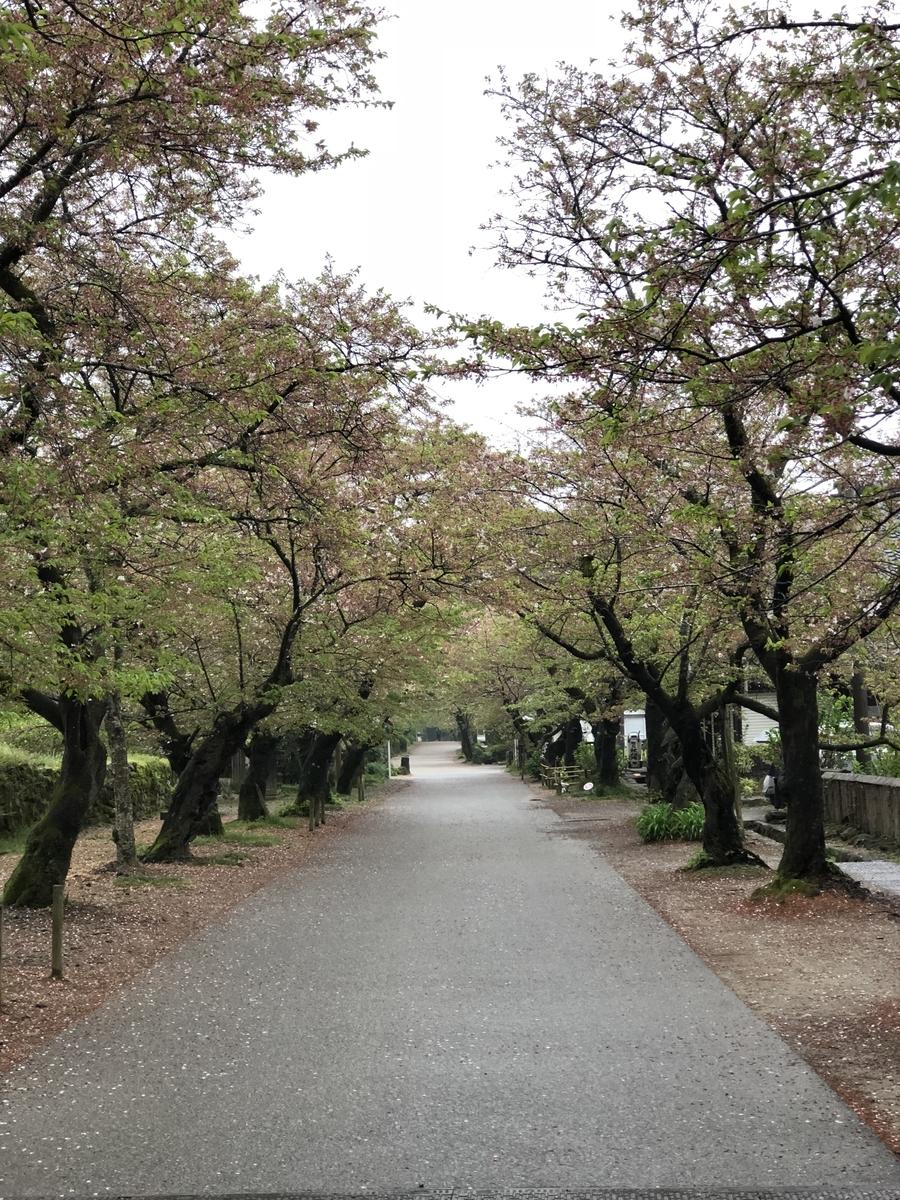 f:id:saku-haru-sati:20190415072942j:plain