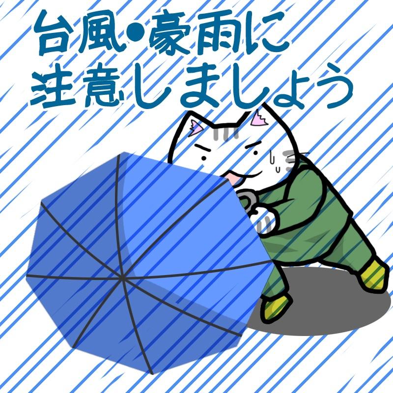 f:id:saku-luce:20180904121203j:plain