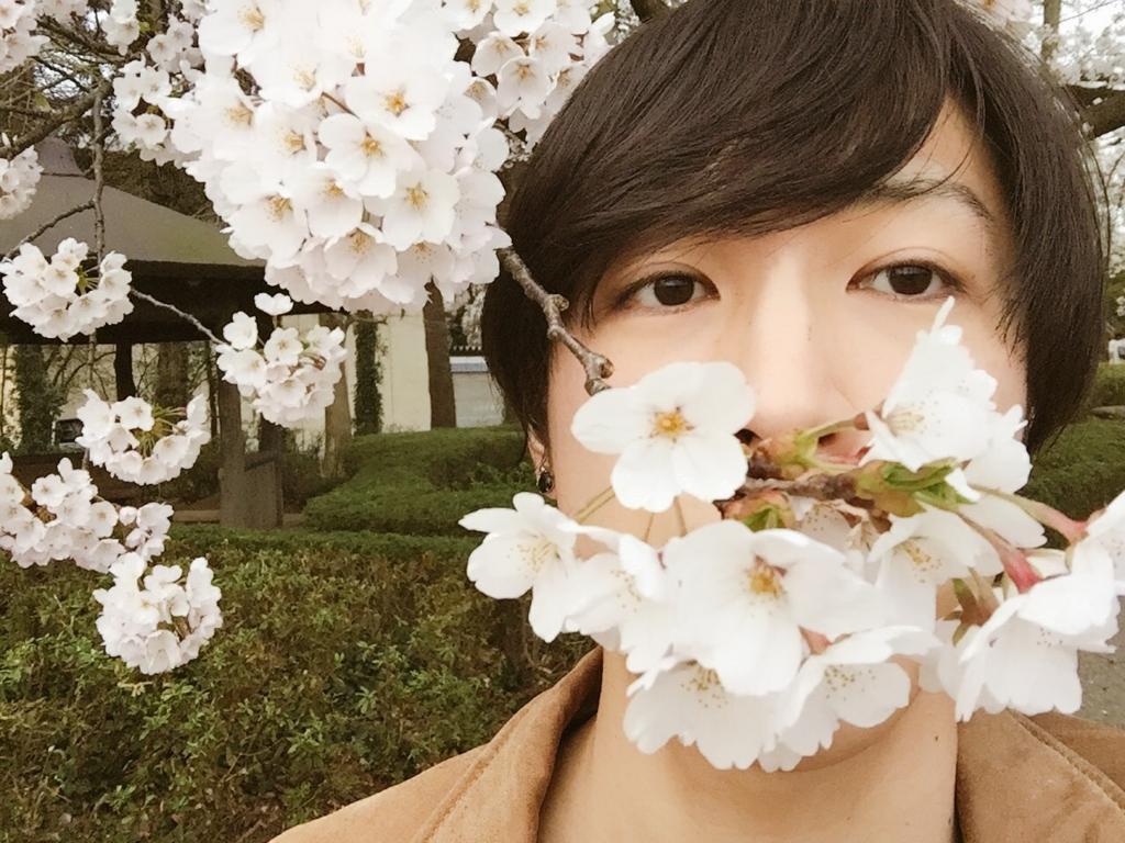 f:id:saku-suke:20170502235527j:plain