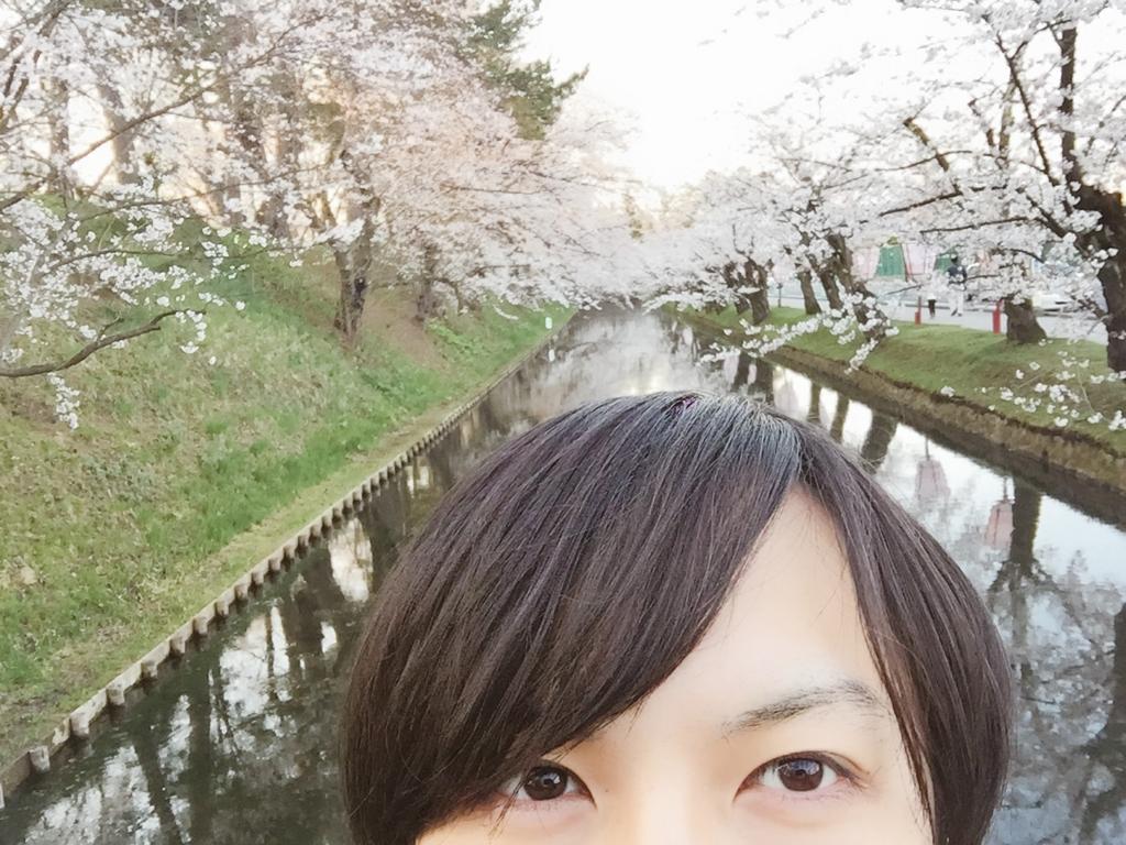 f:id:saku-suke:20170503000534j:plain