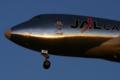 JL JA401J B747-400F(SCD)