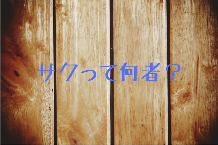 f:id:saku13245:20180504220823j:plain