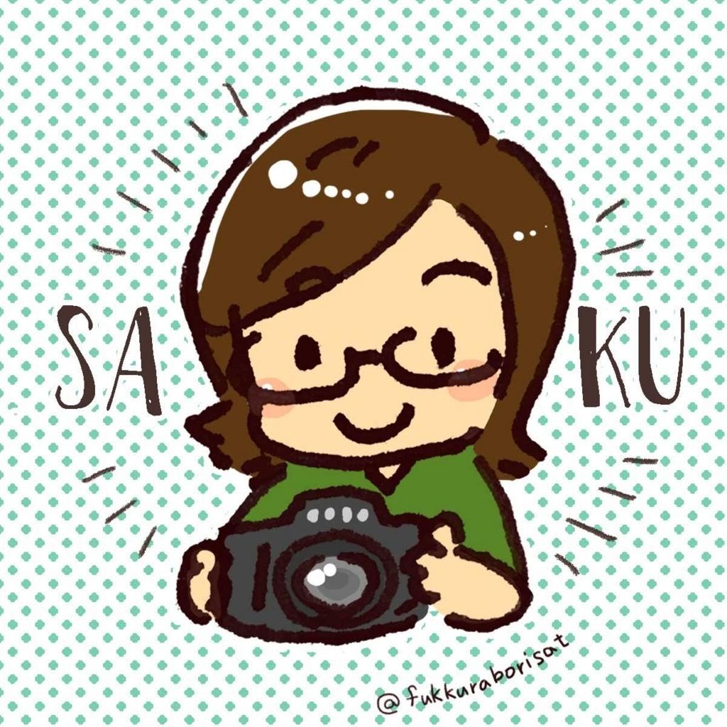f:id:saku_bangkok:20180520171955j:plain