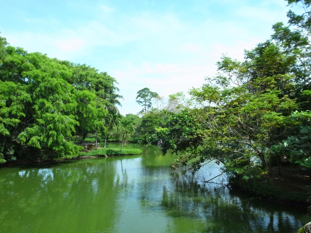 バンコク郊外にあるバーンガジャオ地区は緑いっぱいでサイクリングコースに最適