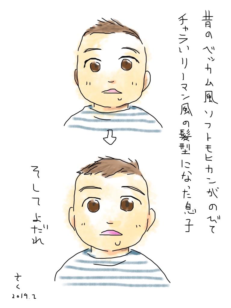 f:id:saku_kisaragi:20190221033116j:plain