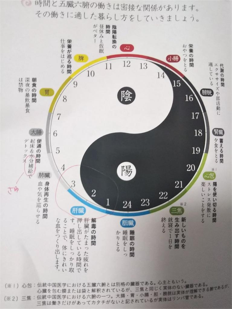 f:id:saku_shizuku:20180701203950j:image:w300
