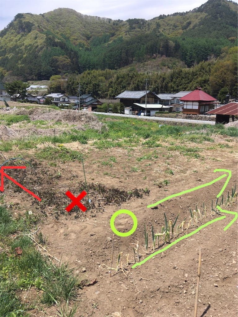 f:id:sakuhodekurasu:20190511142426j:image
