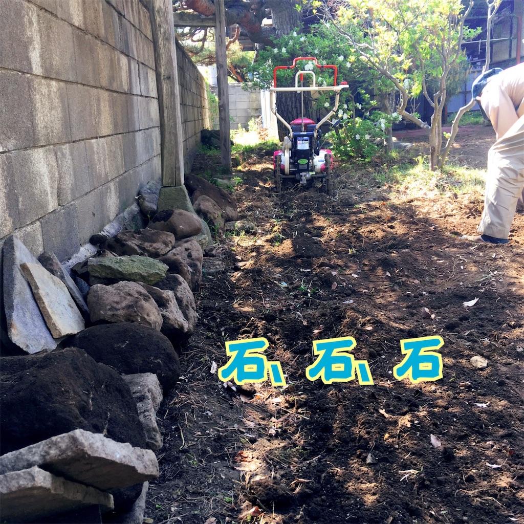 f:id:sakuhodekurasu:20190520070226j:image