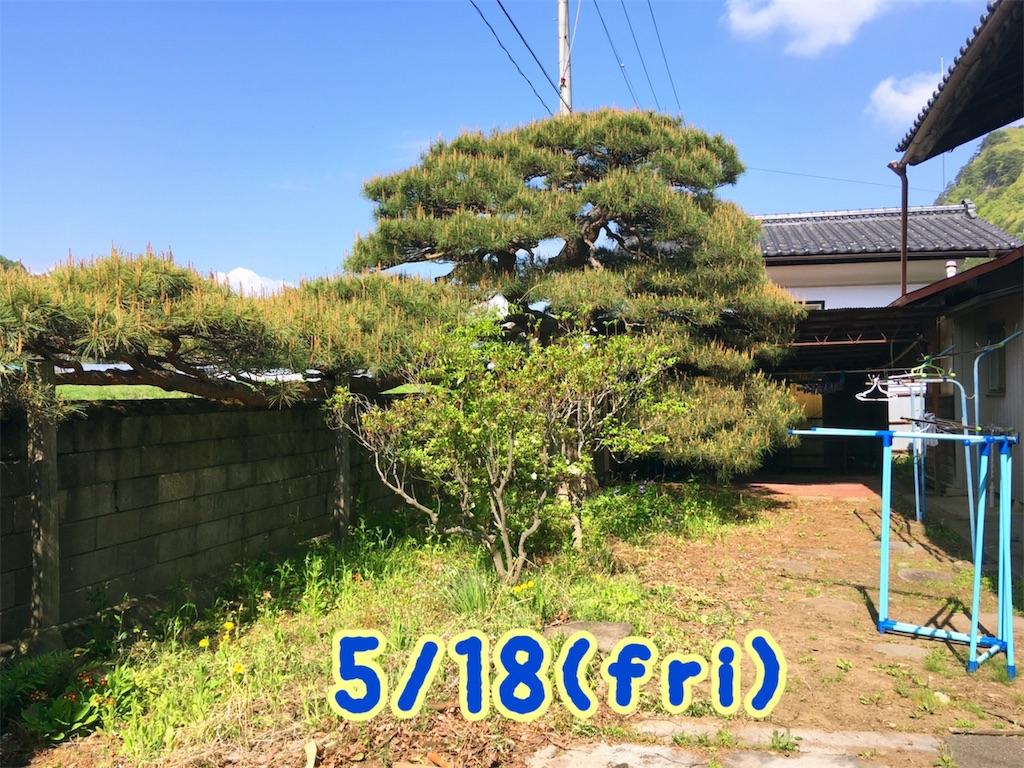 f:id:sakuhodekurasu:20190520071319j:image
