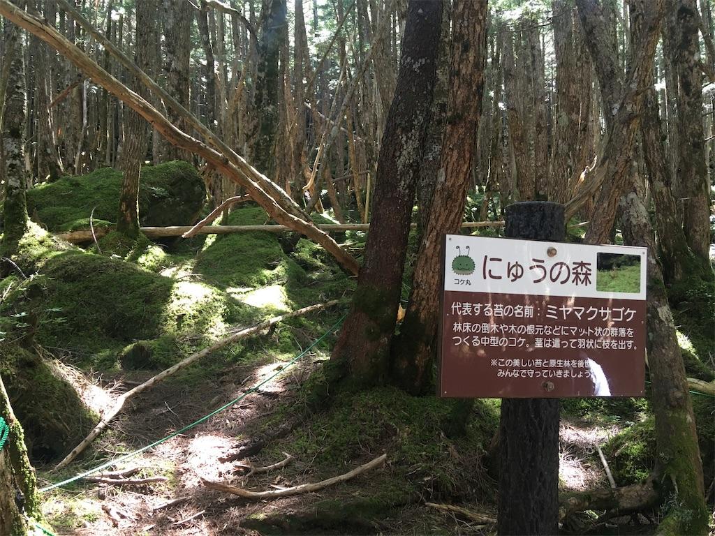 f:id:sakuhodekurasu:20200823185956j:image