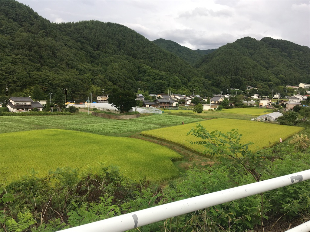 f:id:sakuhodekurasu:20200904215036j:image
