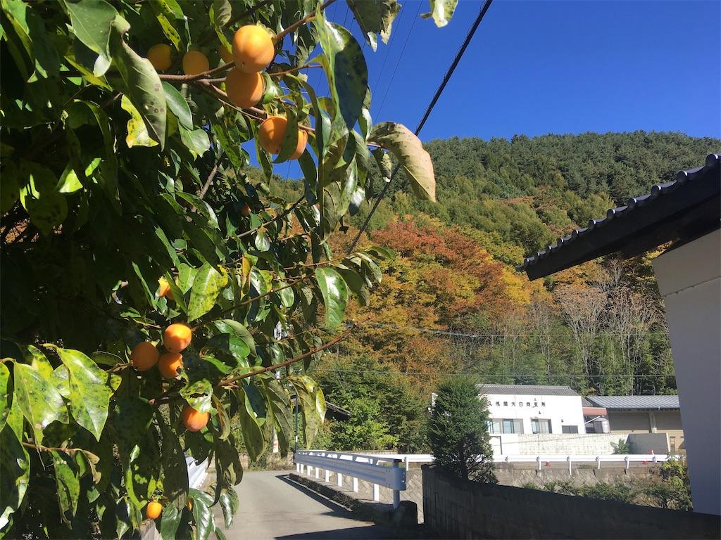 f:id:sakuhodekurasu:20201026191700j:image