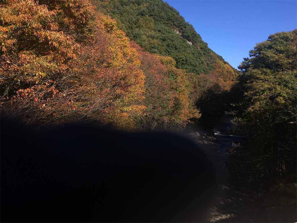 f:id:sakuhodekurasu:20201026195719j:image