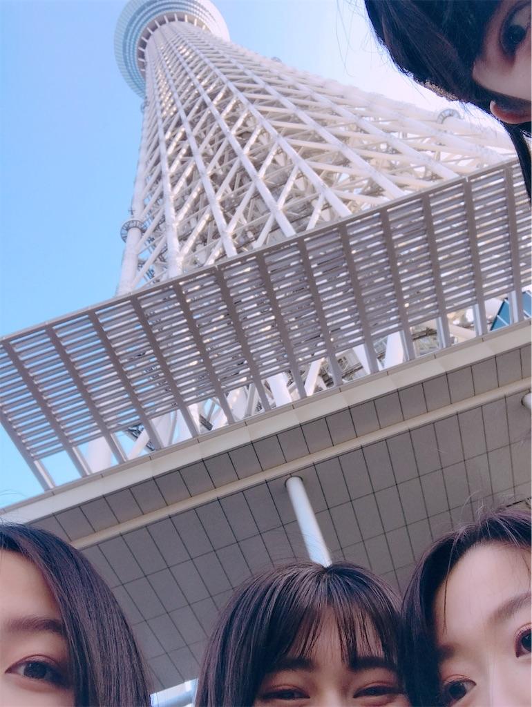 f:id:sakukoni19151:20190529001919j:image