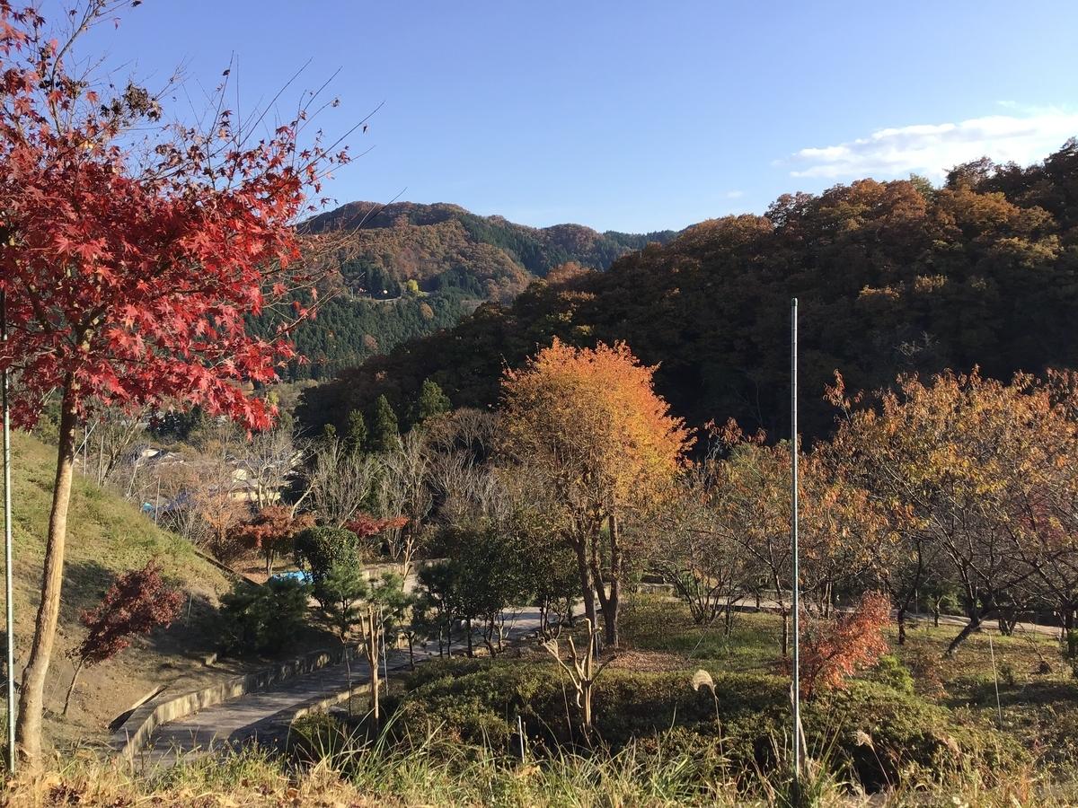 f:id:sakuma-akihiro:20201118114040j:plain