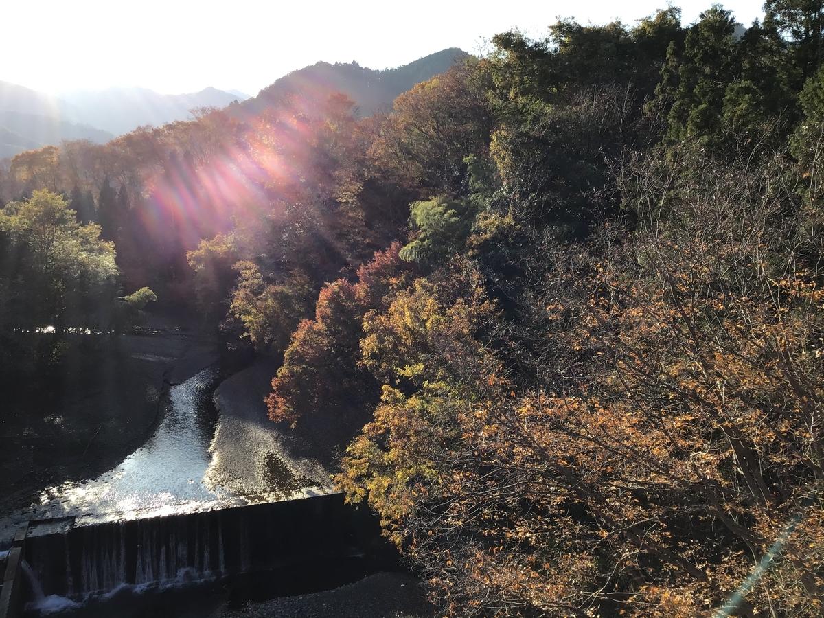 f:id:sakuma-akihiro:20201118114659j:plain