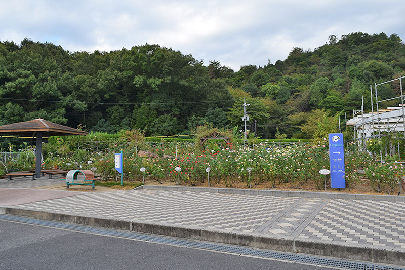f:id:sakumaga:20191220162450j:plain
