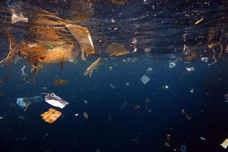 潮の流れに乗って現れた海洋ゴミ。海は私たち生活の受け皿ではない(葉山沖)