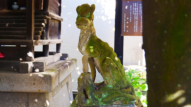 これもオオカミの狛犬(東京杉並区・宿町御嶽神社)