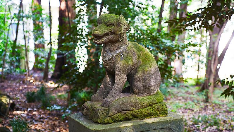 オオカミの狛犬(東京練馬区・土支田八幡宮)