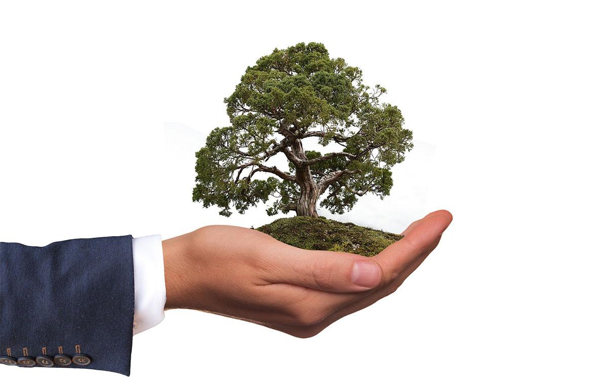 なぜ、ESG投資が広まったのか