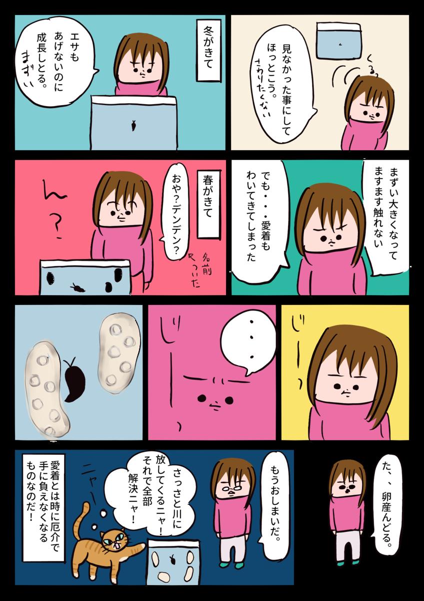 f:id:sakura-candy:20191106172903p:plain
