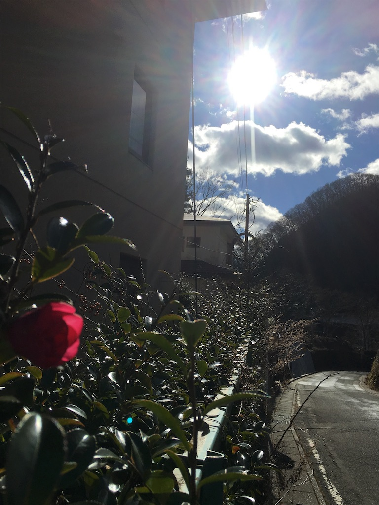 f:id:sakura-renaissance:20170104005550j:image