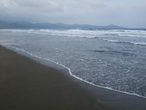 f:id:sakura464:20090619181113j:image