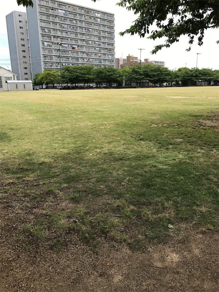 f:id:sakura47ny:20170606204001j:image