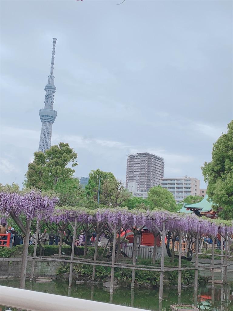 f:id:sakura__625:20190501010019j:image