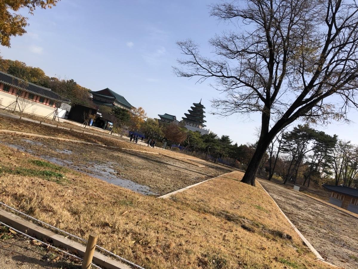 f:id:sakura__mochi:20210131001151j:plain