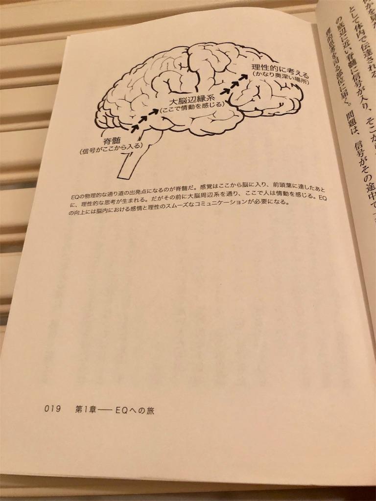 f:id:sakurabachiharu:20190413211729j:image