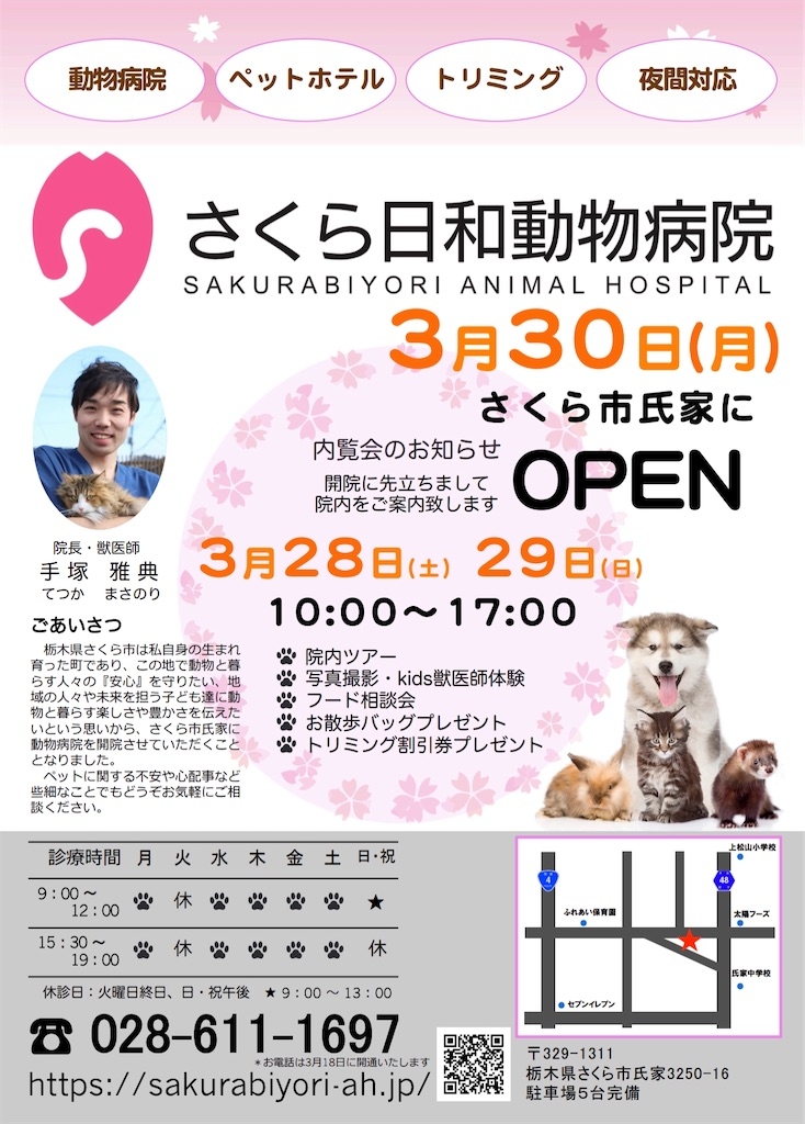f:id:sakurabiyori-ah:20200303231400j:image