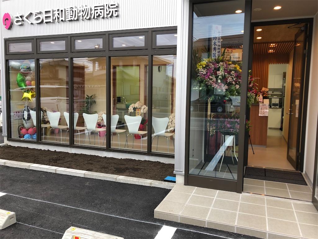 f:id:sakurabiyori-ah:20200407024429j:image