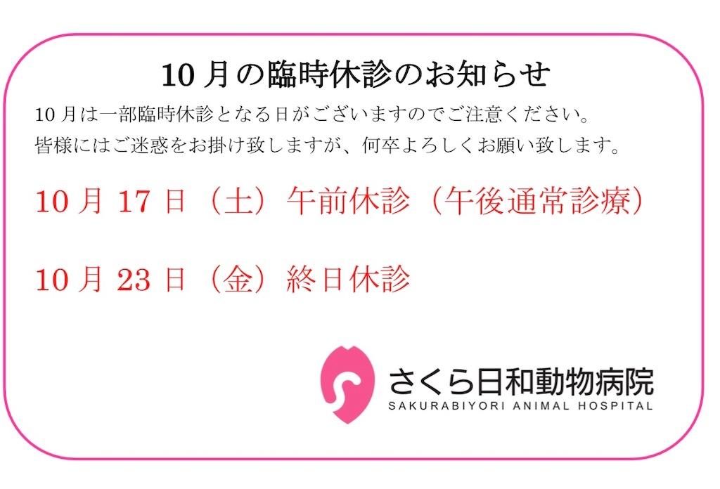 f:id:sakurabiyori-ah:20200918114035j:image