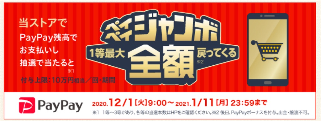 f:id:sakurabiyori-ah:20201217152803j:image