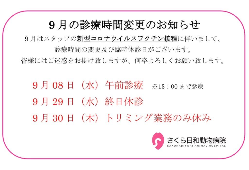 f:id:sakurabiyori-ah:20210827144359j:image