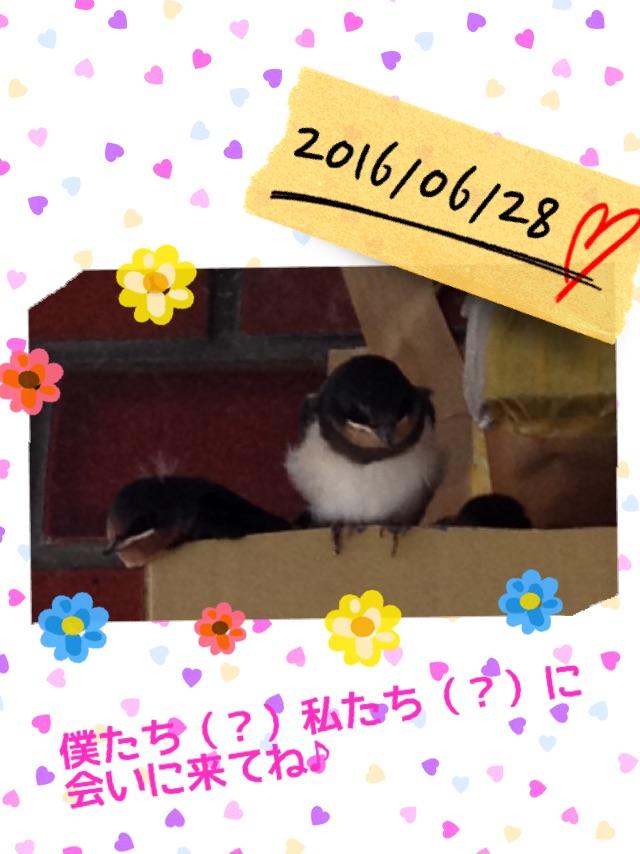 f:id:sakuracraft:20160628203553j:plain