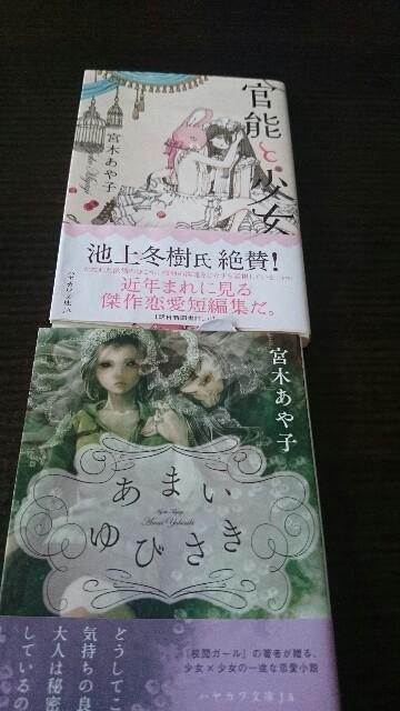 f:id:sakurafubukimau:20170320101816j:plain