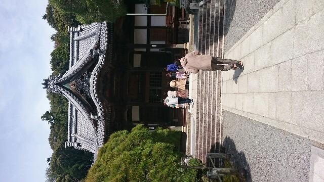 f:id:sakurafubukimau:20180408143418j:image